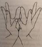 blog-anahata-clases-de-yoga
